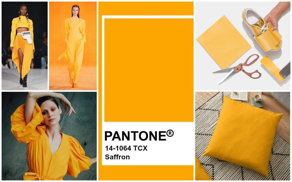 màu vàng mù tạt Pantone
